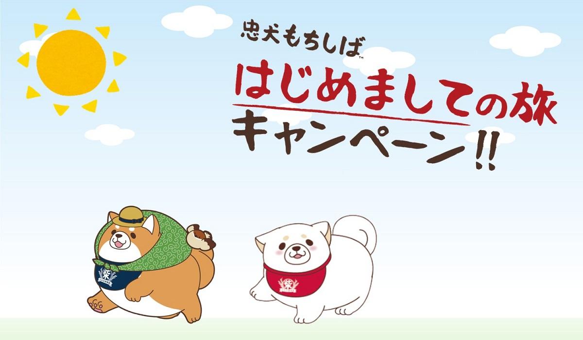 はじめましての旅キャンペーン<br />【忠犬もちしば】