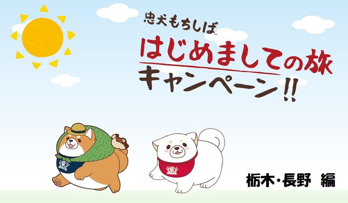 はじめましての旅キャンペーン<br />栃木・長野 編【忠犬もちしば】